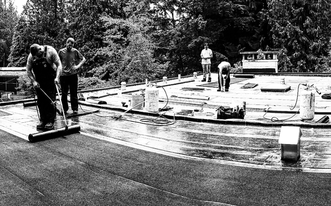 The Roofing Experts That Ensure Professional Shingle Repair