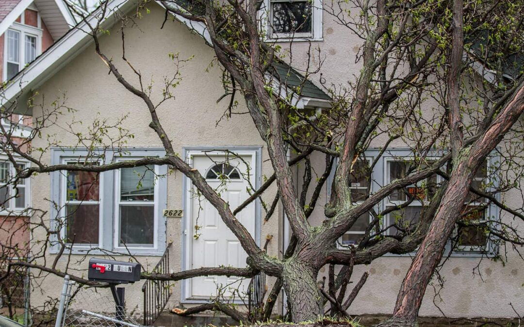 Storm Damage and Your Roof: Affects, Costs, & Solutions | Cooper Roofing Vancouver